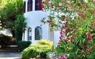 casa verano plantas